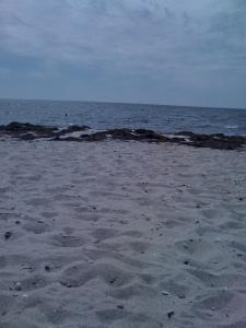 Cape Cod - Beach