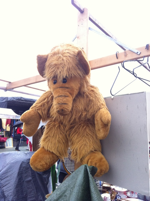 Check out this prize!! Who remembers Alf?!?!?