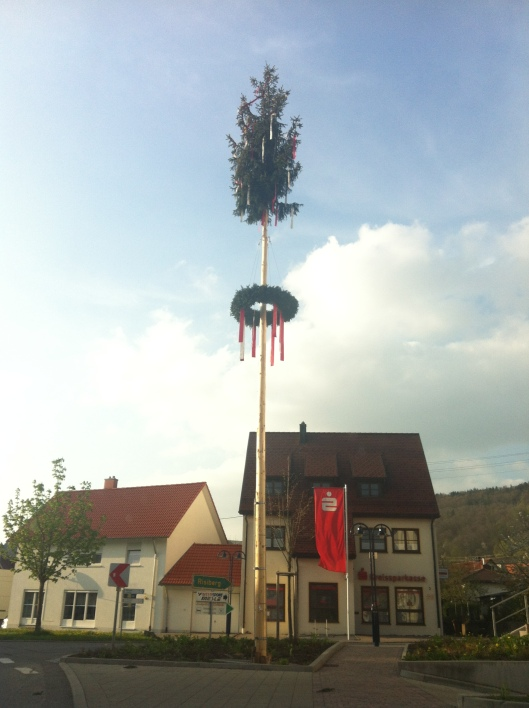 Our town's Maibaum = May Tree